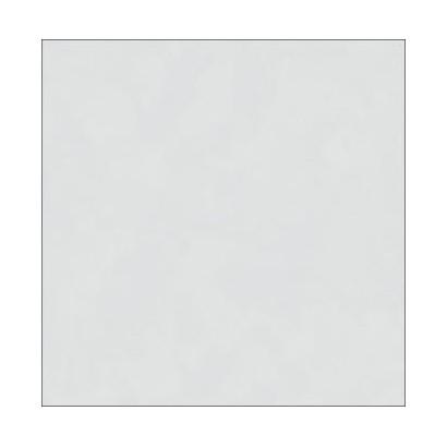 Porcelanato Inout 56x56cm PHD56030RSansevieria Silver Cx 2,20m²