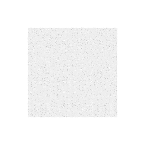 Piso Rocha Forte 55x55cm 55560 A P4 Cx 2,72m²
